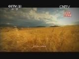 《中国梦 新歌展播》 20140501 光荣与梦想