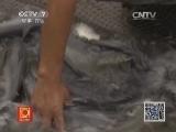 20140516 一亩水面养出18万斤鱼