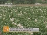 [农广天地]马铃薯劣质茎块形成原因与预防措施(201400609)