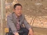 [科技苑]盐碱地亩产四万斤(20140611)