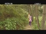 《小小智慧树》 20140701