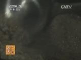 [农广天地]重庆小吃(下)(20140717)