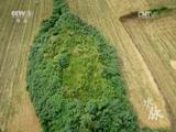 央视纪录片 《魅力纪录》《水脉》 - 农业天地 - 农业天地的博客