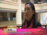 全国人大代表杨艳:企业如何在乡村旅游中发挥作用