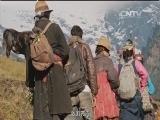 [第三极]第二集 一片热土 喜马拉雅山峡谷里神秘的鸡爪谷