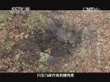 [探索发现]金陵迷雾 第二集 探秘和陵 海陵王迁墓