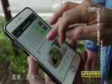 """《生活早参考》 20150717 """"吃货传奇""""系列节目——跟着老妖有肉吃"""