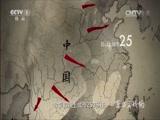 [东方主战场]第八集 正义必胜 敌后战场全面大反攻