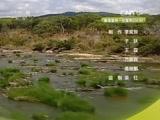 《自然传奇》 20160109 穿越杀戮之河