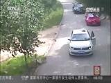 """[中国新闻]北京:""""7·23""""东北虎致游客伤亡事件"""