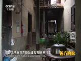 [远方的家]一带一路(18)丝路上的华侨村