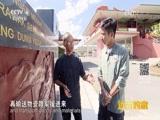[远方的家]一带一路(70)马来西亚 抗战纪念碑的故事