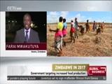 globalbusinessafrica ZIMBABWE IN 2017