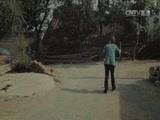 《全国首届平安中国微电影微视频》 白发亲娘