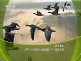 节气——时间里的中国智慧(一)春风化雨 00:36:54
