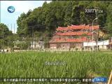 新闻斗阵讲 2017.3.8 - 厦门卫视 00:24:26