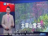 新闻斗阵讲 2017.3.17 - 厦门卫视 00:24:12