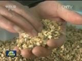 [视频]江西宜春:培育农业发展新动能