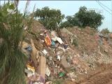 文明巡查:垃圾围困湿地 相关部门回应将进行清运 文明论坛 2017.4.9 - 厦门电视台 00:09:11