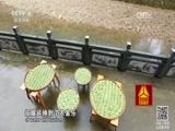 《走遍中国》 20170427 3集系列片《丽水治水记》 第二集 包河到户