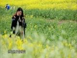 《泊客中国》 20170430 简牍上的人生