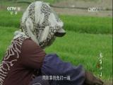 《中国人的活法》第二季 第四集 老丁小丁 00:49:57
