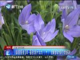 两岸新新闻 2017.5.30 - 厦门卫视 00:27:19