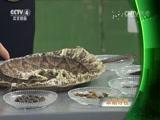 洪涛信箱:血管保卫战 中华医药 2017.06.04 - 中央电视台 00:41:45