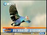 新闻斗阵讲 2017.6.5 - 厦门卫视 00:24:31