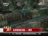 [中国新闻]直播香港:走进香港后花园——西贡