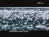 《再说长江》 第六集 水的年轮