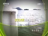 惠东奇湾(下) 00:23:36