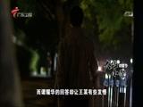 《南粤警视》 20170820 大站小警——谭耀华