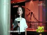 [新闻袋袋裤]小记者说家乡 恐龙世界历险记