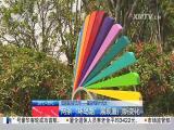 厦视新闻 2017.10.01 - 厦门电视台 00:23:41