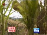 《贵州新闻联播》 20171005