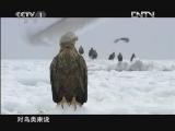 《魅力纪录》 20120816 东亚生态大勘探 第四集