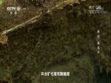 """解密""""高低井"""" 00:23:45"""