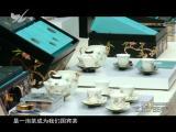 炫彩生活 2017.10.21 - 厦门电视台 00:07:09