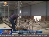 [甘肃新闻]临夏州粮改饲(下):旱作农业改革正当时