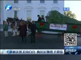 [新闻60分-河南]圣诞树送抵美国白宫 梅拉尼娅携子迎接