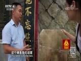 《文成慢记》(上)侨韵慢城 走遍中国 2017.12.08 - 中央电视台 00:25:48