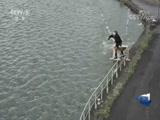 [巅峰时刻]法国塞纳河畔轻松惬意的尾波滑水
