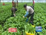 《贵州新闻联播》 20180111