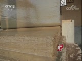大熊猫的粪便也可以造纸? 是真的吗 201.1.15 - 中央电视台 00:08:39