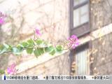 厦视新闻 2018.1.13 - 厦门电视台 00:23:20