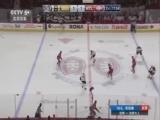 [NHL]常规赛:棕熊VS加拿大人 第二节