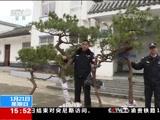 [新闻直播间]安徽黄山 盗伐12棵野生黄山松 四人被罚