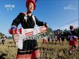 我是中国的孩子·系列纪录片 莫吉次吉的火把节 00:23:42