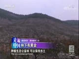 《森林城市》(5) 林下有黄金 走遍中国 2018.03.16 - 中央电视台 00:25:53
